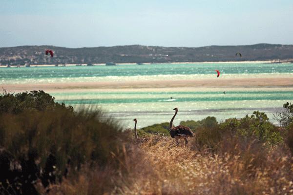 Langebaan Lagoon